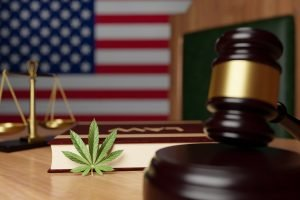 Higher Yields Consulting Hot States: Cannabis Legalization Is Moving Forward in These Ballot States