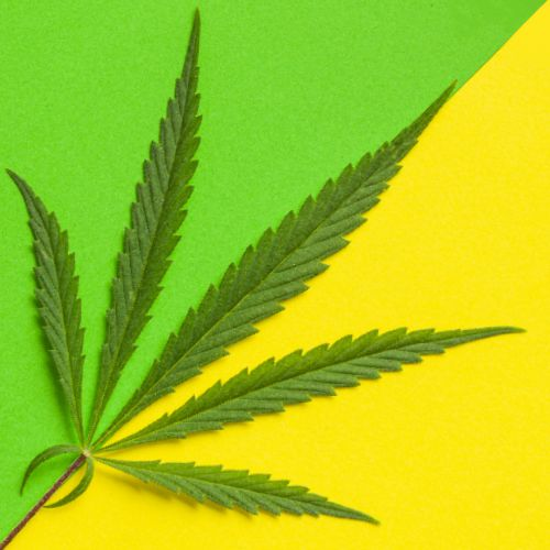 East Coast legalization and Social Equity