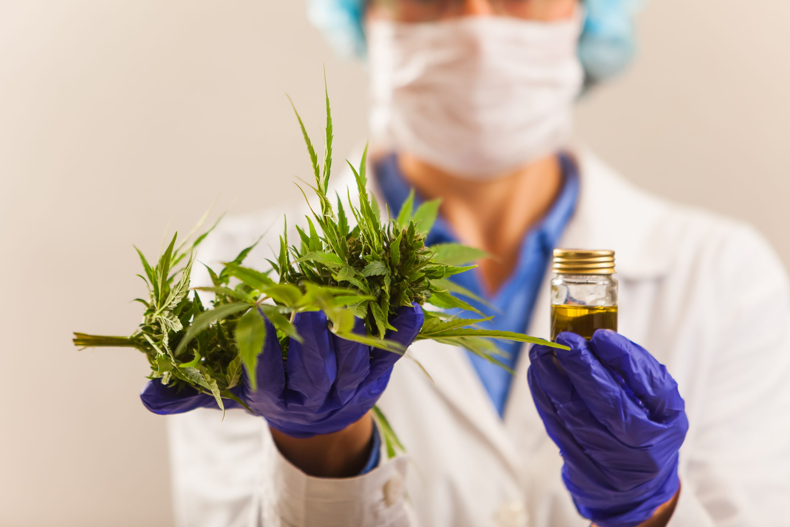 Higher Yields Consulting Making Space for STEM Professionals in the Cannabis Industry
