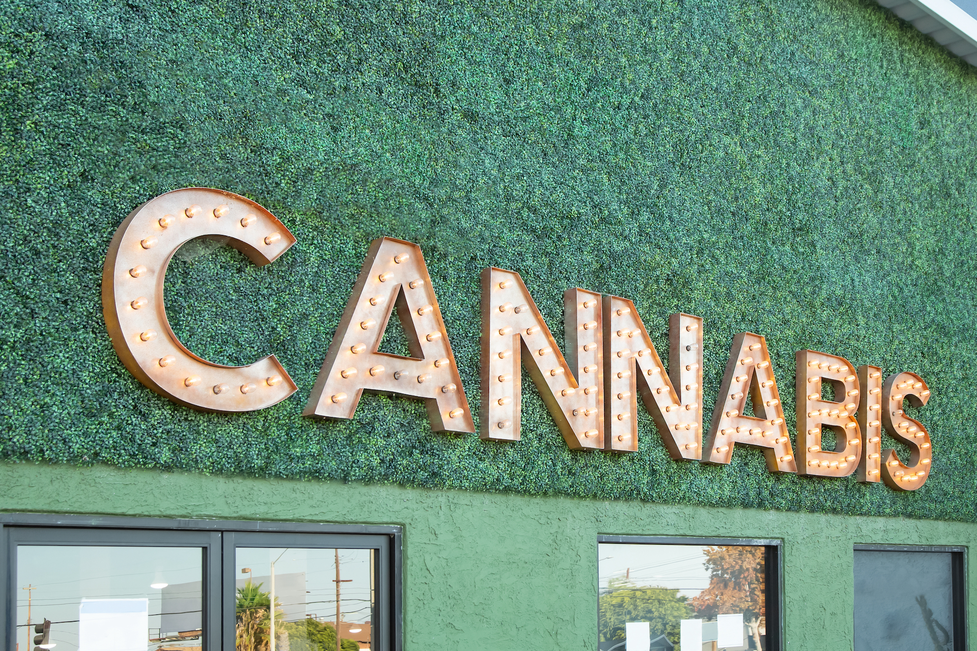 Higher Yields Consulting Cannabis Licensing: The True Cost of Your Application